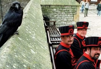 Tower of London keys stolen from sentry post | News Article