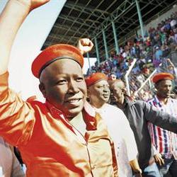 EFF might be more successful than new Collective for Democracy: Analyst
