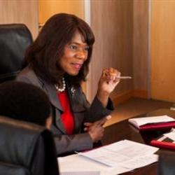 Public protector's office asks for budget increase