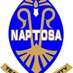 Prepare for long wage negotiation: Naptosa