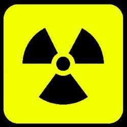Secret nuclear deal talks held in KZN: report