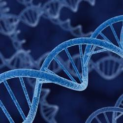 Nigeria DNA samples difficult to match: report