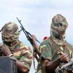 Scores killed in Boko Haram attack in Nigerian villages: report