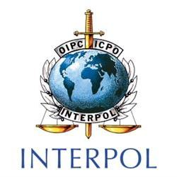 Speculation won't help Interpol investigation