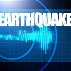 Quake was 3.8 magnitude, not 4.6: US Geological Survey