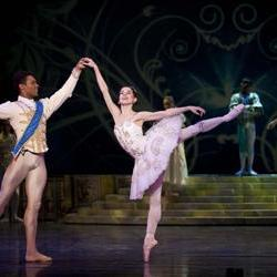 Joburg Ballet to perform Christmas Nutcracker in Kalahari desert