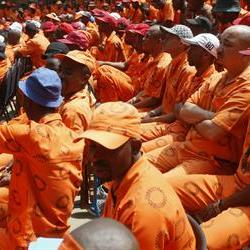 Nicro: Correctional Services should get priorities straight