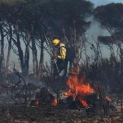 Firefighters work through the night to contain Muizenberg fire