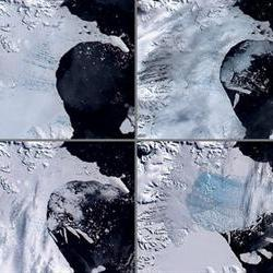 Ice shelf could vanish by 2020