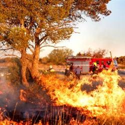 WoF geared for fires in FS and NC