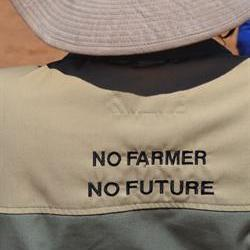 FSA says farmers' focus is on food production, not politics