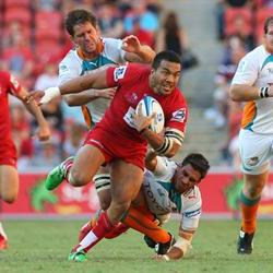The Cheetahs stem the 'Red Tide' in Bloem