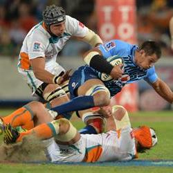 Pierre Spies out of Cheetahs clash