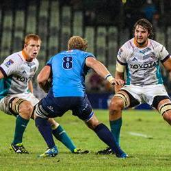 The Cheetahs remain unchanged for the Rebels