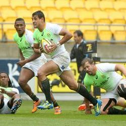 Chris Dry out for remaining Sevens World Series