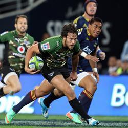 Bulls slump second defeat in NZ