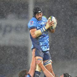 Matfield in NZ as part of the technical staff