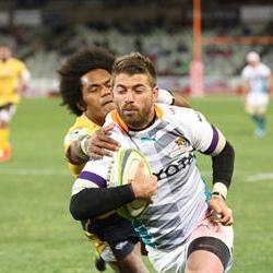 The Cheetahs shift their focus to the Sharks