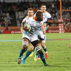 Eight Springboks run out against the Sharks