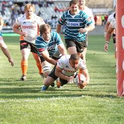 FS Cheetahs upbeat ahead of the Sharks