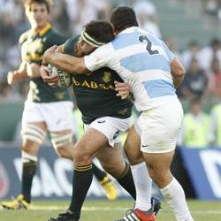 Matfield and Alberts back in Bok mix