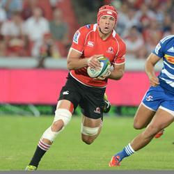 Whiteley back in Bok squad