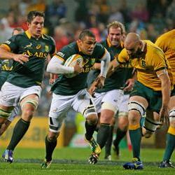 Boks mum on Habana yellow