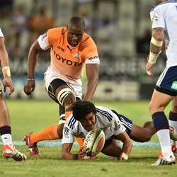 Mohoje back in Cheetahs line-up