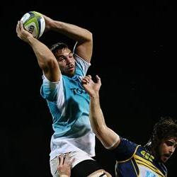Cheetahs target Highlanders lineouts