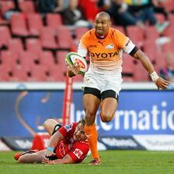 The Lions rotate for Cheetahs clash