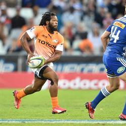 Cheetahs have a plan with Petersen