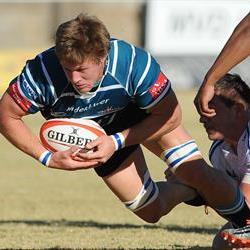 Blue Bulls unchanged for Griquas