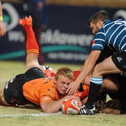 FS Cheetahs braced for Movember Cup