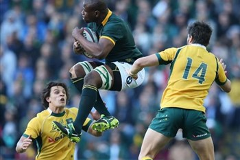 Mohoje doesn't want to focus on possible Bok captaincy | News Article