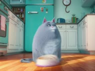 Movie Report: 'The Secret Life of Pets'
