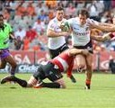 Bookies tip FS Cheetahs to win by 8 | News Article