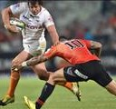 Cheetahs want to end campaign with a bang   News Article