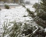 A cold weekend predicted for Central South Africa   News Article