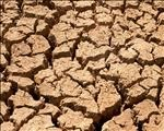 Renewed appeal for drought aid for farmers | News Article