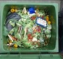 Millions could be fed with wasted food | News Article