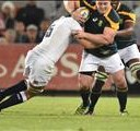 Koch starts for Boks in Salta | News Article