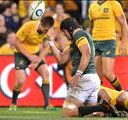 Whiteley and Jantjies optimistic about the Boks | News Article