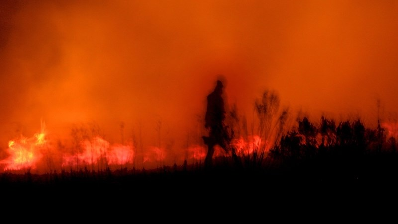 Damage after historical FS veld #fires amounts to millions | News Article