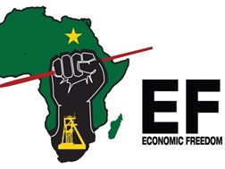 EFF FS concerned over rising #GBV hotspots | News Article