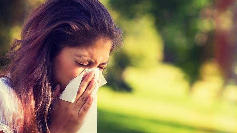 Pollen monitoring can help keep allergies in check | News Article