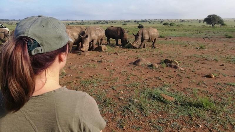 MSc student sets sights on perfecting rhino milk recipe | News Article