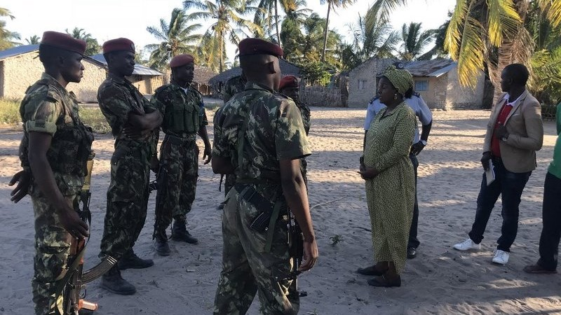Mozambique formally seeks help from neighbours to stem insurgency   News Article