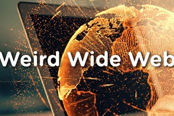 Weird Wide Web - Sand grain sized chips used for surveillance | Blog Post