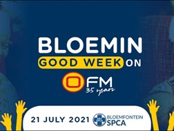 Bloemin' Good Week - SPCA Bloemfontein | News Article