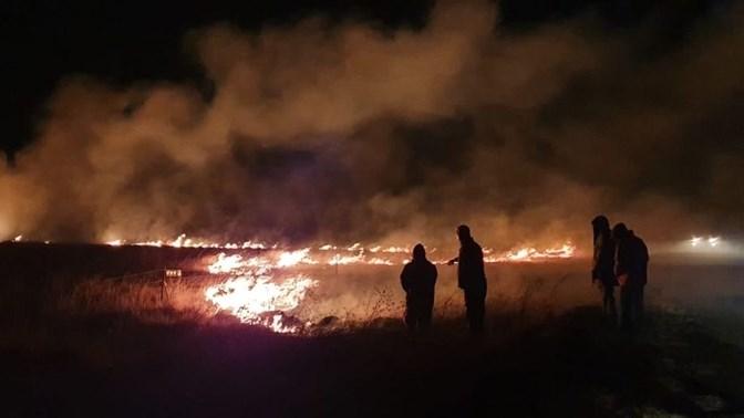 Vrystaat Landbou begin skenkingsprojek ná veldbrande | News Article